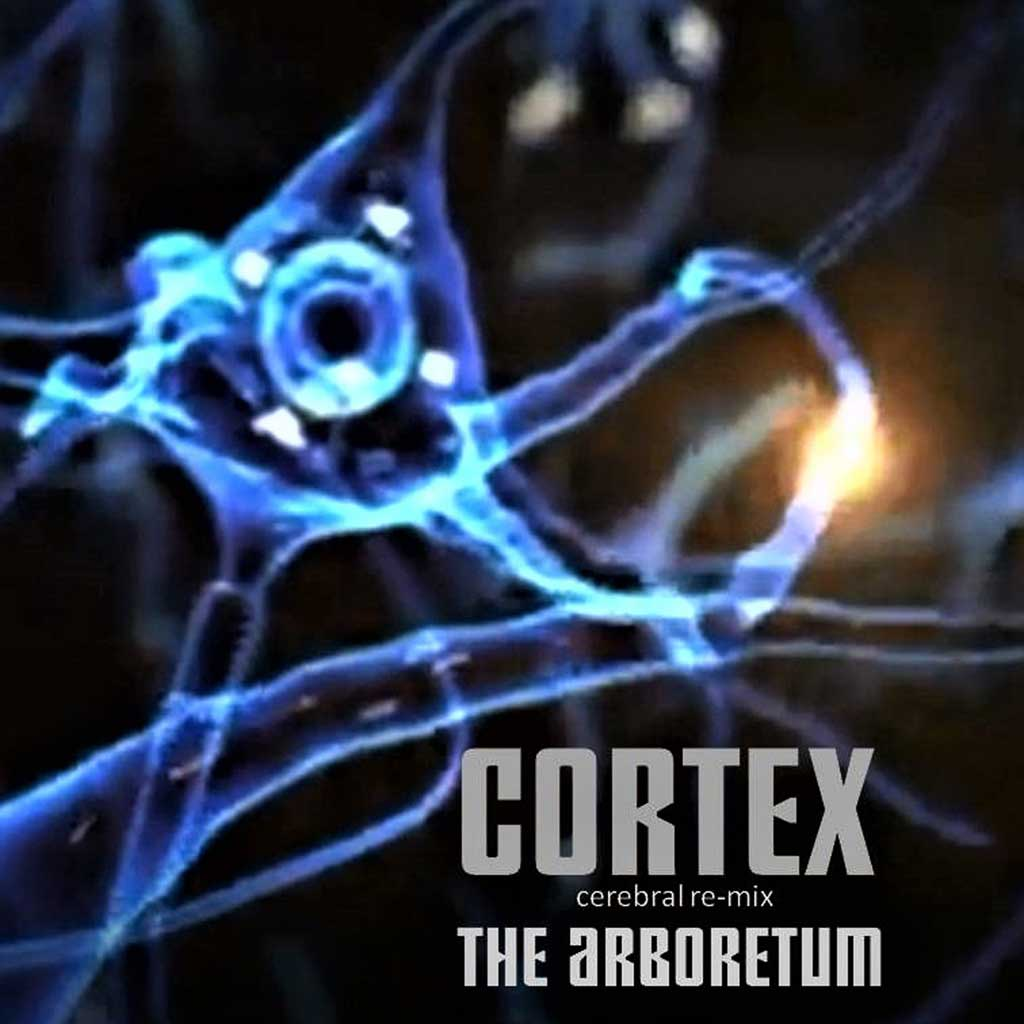 CD cover of he Arboretum - Cortex (Cerebral - re-mix) - Single