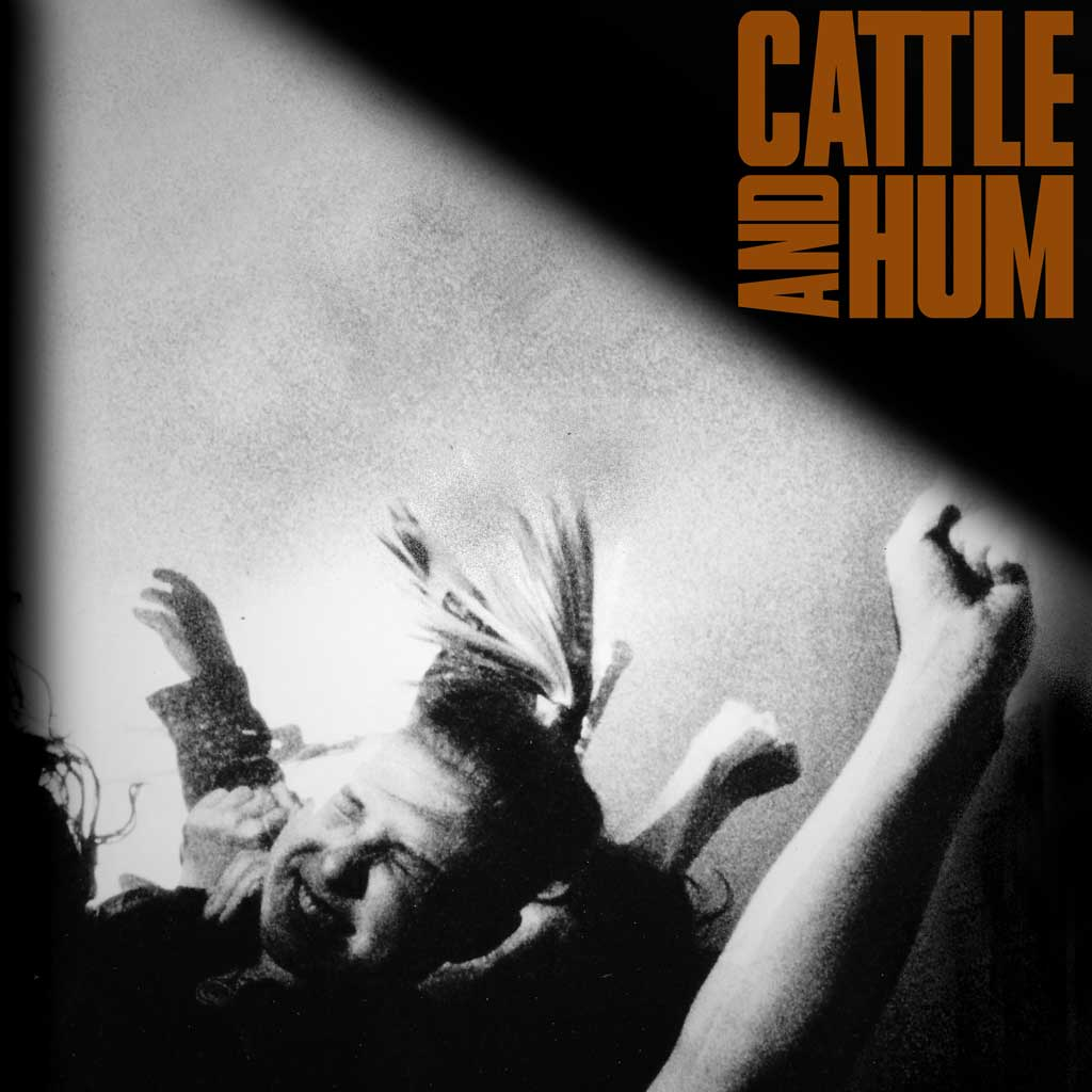 Cattle and Hum Front Cover