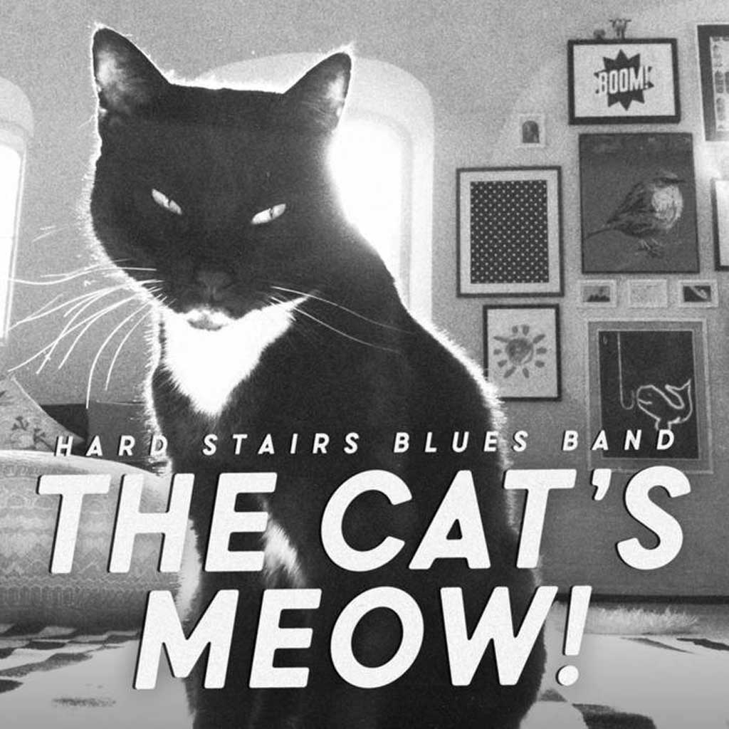 Album cover for Cats Meow by Hard Stairs